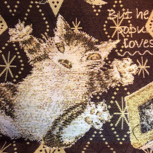 池田あきこ先生のわちふぃーるどダヤンのトートバッグ石の回廊の裏側の柄アップ写真
