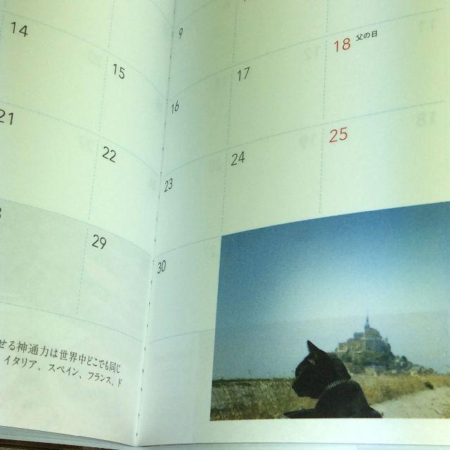 黒猫ノロ2017年スケジュール帳の内側部分のアップ写真