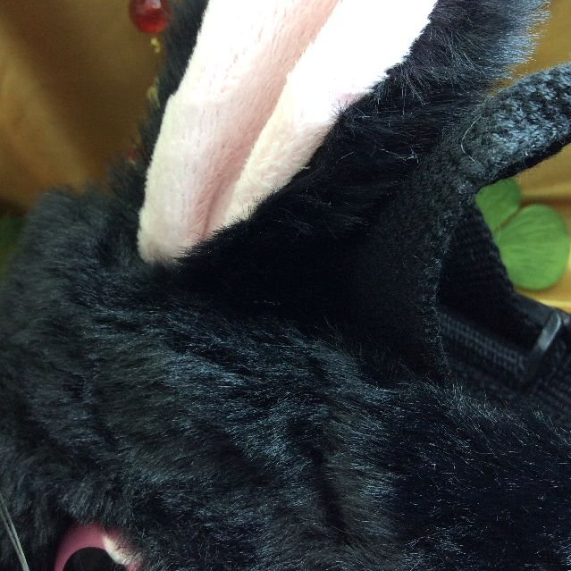 ヌイグルミタイプのリュックにもなるルートート猫2WAYバッグの猫の耳の部分のアップ写真