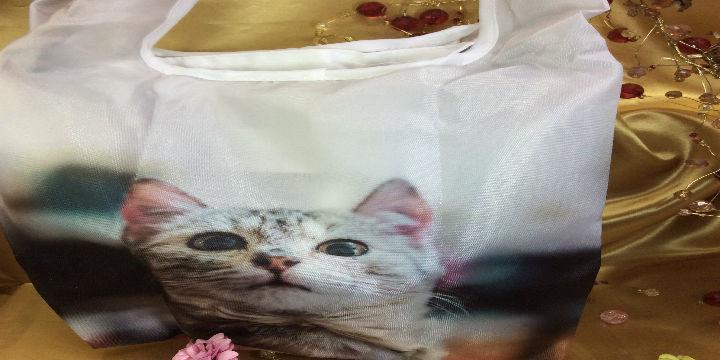ルートートルーショッパー猫の全体の画像